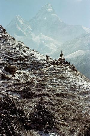 Nepal - Ama Dablam