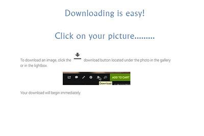 Downloading image