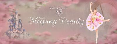 Sleeping Beauty facebook banner