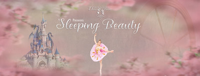 Sleeping Beauty facebook banner mobile
