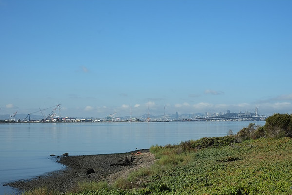 Walk, Emeryville-Berkeley, October 2012