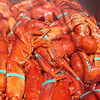 The Maine Lobster Festival on Wednesday. The festival will cook up about 24,000 pounds of lobster by closing time Sunday. BDN photo by Heather Steeves