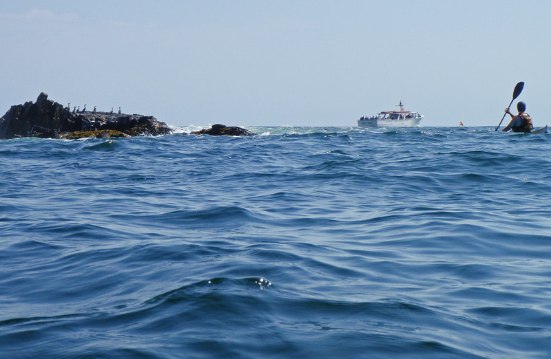 """Sightseeing boat viewing """"The Bush Compound"""""""