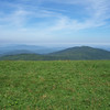 Max Patch Mtn. view