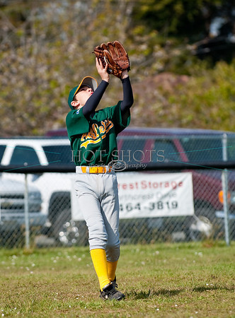 Majors Division - Baseball