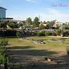 Striding up the the bridge, looking over the back half of the crowd as they get started.<br /> Making Strides, Tempe Beach Park, 2010
