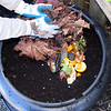 Every time you add food waste, cover it with yard waste.