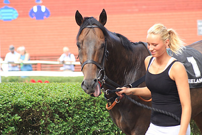 IMG_0506 Maltho in the Paddock with Jaqueline