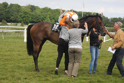 IMG_7043  Marc Stott on Maltho and all the happy owners