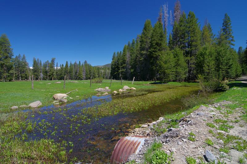 Clover Meadow.