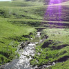 Video of Galindo Creek near gate.