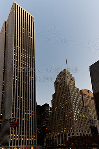 Manhattanl_063