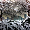 Hudson River Park  -- click image for larger view