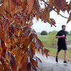 Pat Christman<br /> Fall leaves frame a marathon runner Sunday.