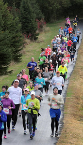 Pat Christman Runners wind out of the woods behind Mount Kato during Sunday's half marathon.