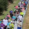 Pat Christman<br /> Runners wind out of the woods behind Mount Kato during Sunday's half marathon.