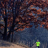 A marathon runner is framed by fall foliage during Sunday's Mankato Marathon.