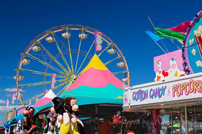 Life's Carnival Ride