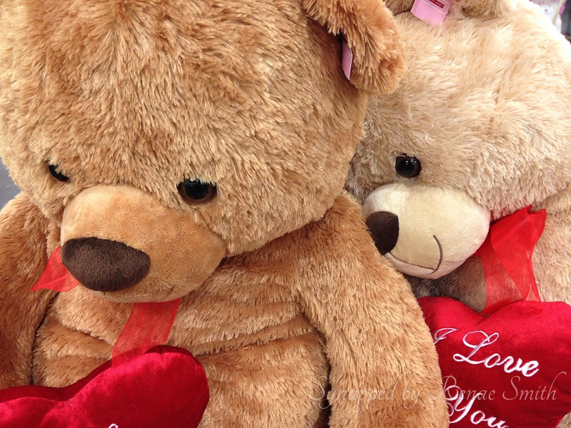 Cuddly Love