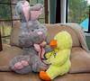 Dr. Bunny II