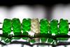 Irish + Gummies = Jig