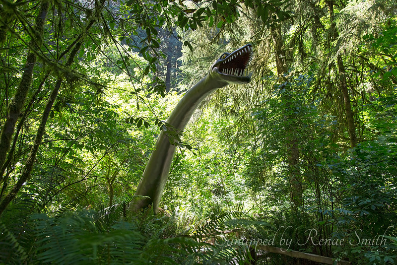 Brachiosaurus in the Garden!