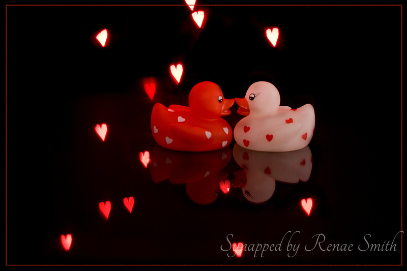 The Rubber Duckies in a Sea of Love!