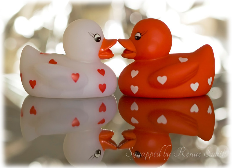 Swim Like a Duckie with Me