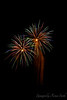 Fireworks Hawaiian Style