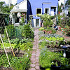 City Farmer - Vancouver Compost Garden