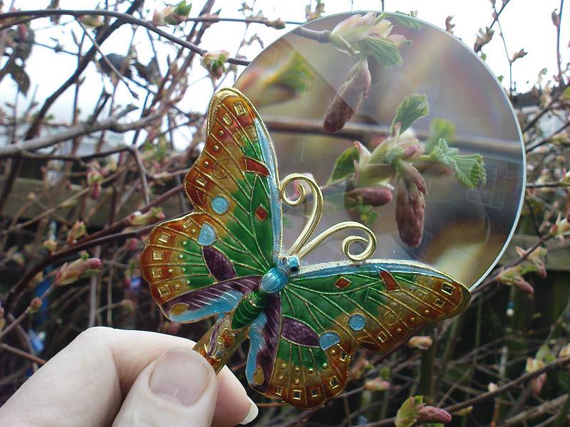 Ornamental butterly magnifyer