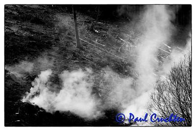 Forestry worker stoking fire, nr Bilsdorf, Luxembourg