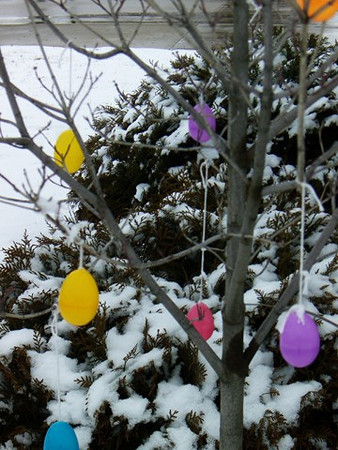 It was an Easter Egg tree....now maybe it's a Christmas Tree?<br /> <br /> Photographer's Name: Art Tate<br /> Photographer's City and State: Anderson, IN