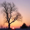 """""""Crack of Dawn"""" in Richland Township<br /> <br /> Photographer's Name: J.R. Rosencrans<br /> Photographer's City and State: Alexandria, Ind."""
