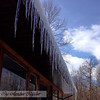(Taken in Mongo, IN)<br /> <br /> Photographer's Name: Amber Ryder<br /> Photographer's City and State: Daleville, IN