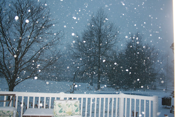 Snowfall at Twighlight <br /> <br /> Photographer's Name: Kim  Gustin<br /> Photographer's City and State: Markleville, IN