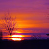 """Pre-Easter"" Sun~Rise ,, Photo taken at my Richland Twd. farm  3-12-13<br /> <br /> Photographer's Name: J.R. Rosencrans<br /> Photographer's City and State: Alexandria, IN"