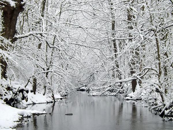 """Sleepy Killbuck Creek,"" at my farm in Richland Township.<br /> <br /> Photographer's Name: J.R. Rosencrans<br /> Photographer's City and State: Alexandria, Ind."