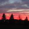 Sunset from my neighbor's.<br /> <br /> Photographer's Name:  <br /> Photographers City and Country:
