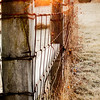 South fence of the Cather Cemetery on Eighth Street at sunrise.<br /> <br /> Photographer's Name: Terry Lynn Ayers<br /> Photographer's City and State: Anderson, Ind.