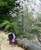 Shonagh and Emmy with peony tree at Heligan on 11th March 2013