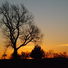 Pre-spring sunrise at my farm in Richland Township.<br /> <br /> Photographer's Name: J.R. Rosencrans<br /> Photographer's City and State: Alexandria, Ind.