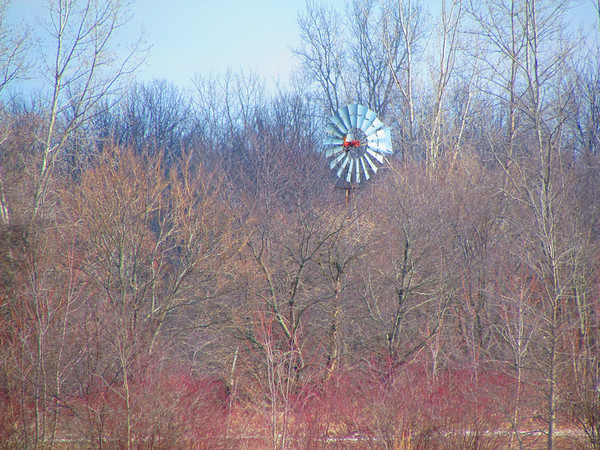 Windmill in the woods.<br /> <br /> Photographer's Name: Brian Fox<br /> Photographer's City and State: Anderson, Ind.