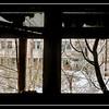 Inside the 30-kilometer Chernobyl Exclusion Zone, Pripyat, Ukraine.