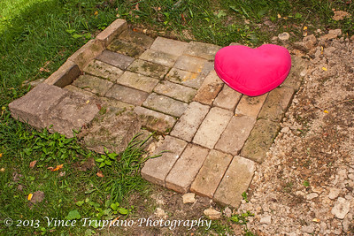 This is Maryanne's final resting place with her favorite pillow.  REST IN PEACE MY BABY GIRL...........