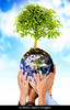 Fig 8.27 / Something that signifies planet / earth / connectedness / to replace existing image on page 219 from Mas 1e which is not availble<br /> <br /> Choice 4 of 11<br /> <br /> AYJ6RN together protecting the planet hands holding the earth with a tree over a blue sky in the background