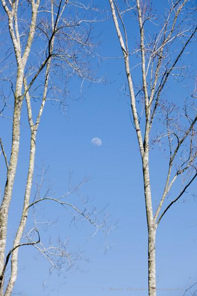 Daylight moon over the 2009 Maseratti in Myrtle Beach, SC