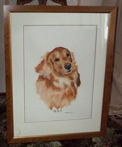 Max (the dog) 8/4/2000-12/26/2010
