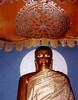 bodha-gaya SHANKAR
