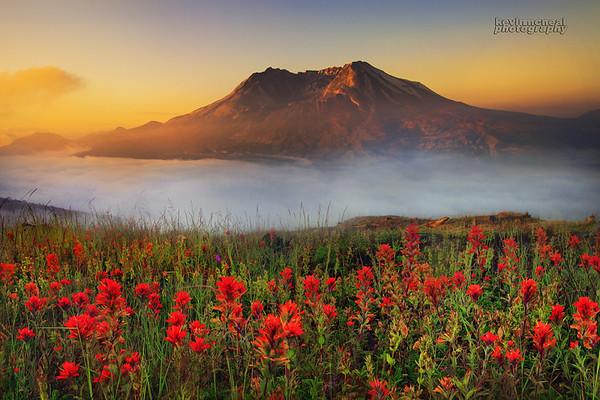 Mt St Helens Sunrise